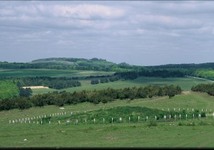 Salisbury Plain, one part of the huge area of land under DIO's management. Photo copyright Stephen Davis.