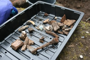 An image of one morning's finds on the medieval site. (Helen Pickering; Crown Copyright)