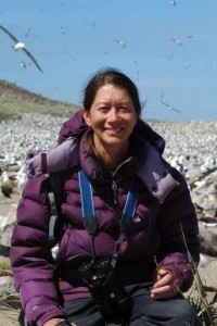Sarah Browning-Lee in Falklands with colony of Black Browed Albatross [Simon Browning]