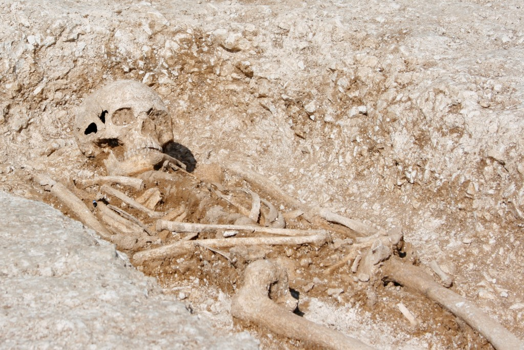 A skeleton in the cemetery prior to the completion of excavation. [Crown Copyright/MOD2016]