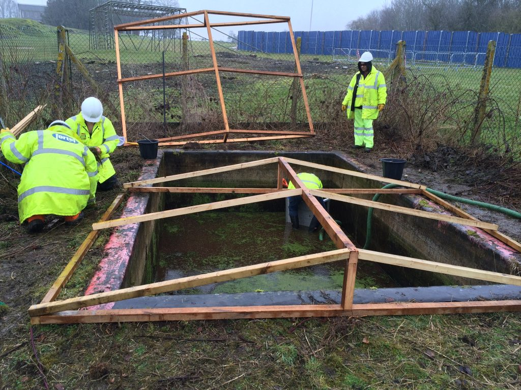 A Skanska team building a pond for the newts. [Skanska]
