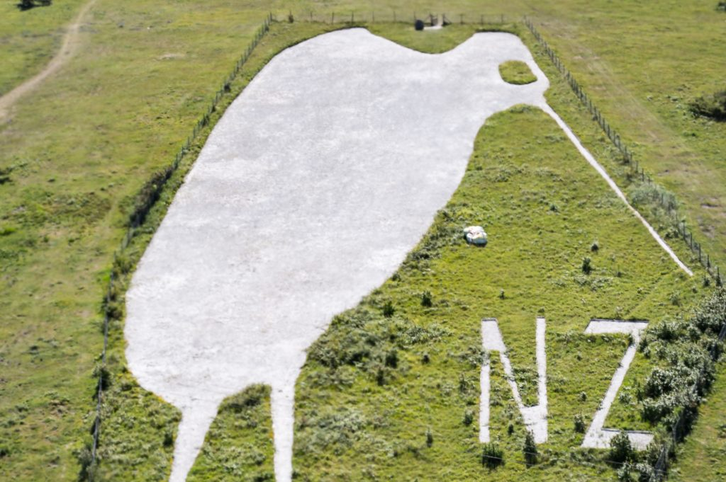 "The Bulford Kiwi from the air, showing its white chalk figure, facing to the right, against the green hillside together with the letters ""NZ"" also in chalk. [Crown copyright, MOD 2018]"