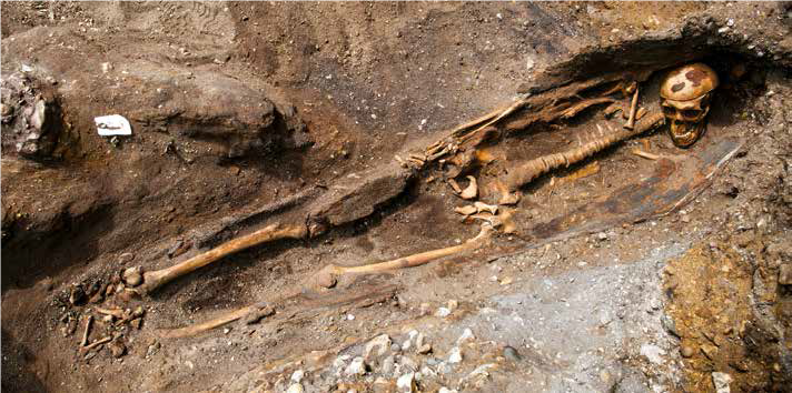 Skeleton remains found at Rat Island, Portsmouth during the Exercise MAGWITCH excavation [CrownCopyright|MOD2018]