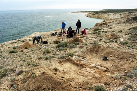 A group of archaeologists around the remains of a low stone wall on a clifftop. Behind them is the sea and a curving coastline.