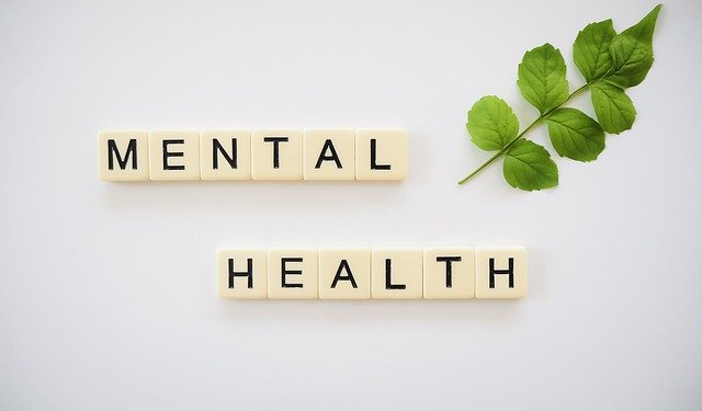 On a white background are Scrabble-style tiles reading Mental Health. In the top right corner is a green leaf.