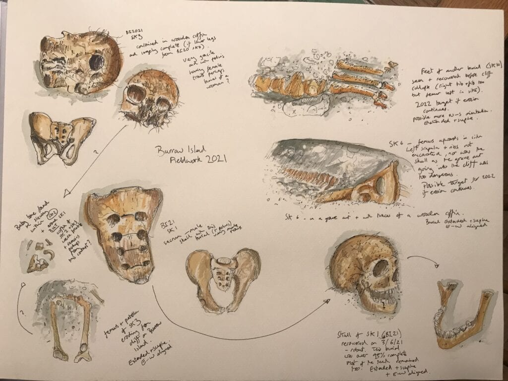Several artistic drawing on a sheet of paper show the remains of skulls and bones found during the archeological dig. Around the photos coloured in white and brown are descriptions of the findings.